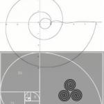 Fibonocci spiral